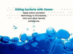 ozono2